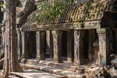 Ruines de Wat Ta Prohm chez Angkor Vat Image stock