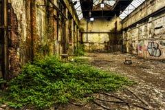 Ruines du bâtiment d'usine avec la végétation rapportant photos stock