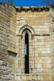 Ruines du monastère de Bonaval Photo libre de droits