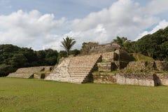 Ruines du site archéologique maya antique Altun Ha photos stock