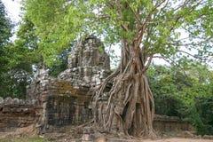 Ruines envahies Image libre de droits