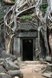 Ruines envahies de Khmer Photographie stock