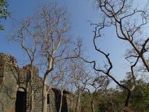 Ruines louches Images libres de droits