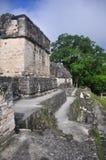 Ruines maya chez Tikal, Guatemala Image stock