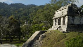 Ruines maya dans Palenque, Chiapas, Mexique banque de vidéos