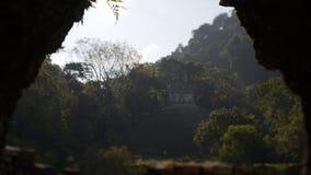 Ruines maya dans Palenque, Chiapas, Mexique clips vidéos