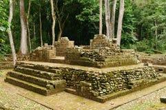 Ruines maya de Copan au Honduras image libre de droits