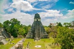 Ruines maya de Tikal au Guatemala Photos libres de droits