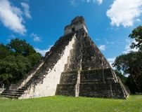 Ruines maya de Tikal, voyage du Guatemala photos stock