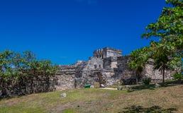 Ruines maya de Tulum Mexique Images libres de droits
