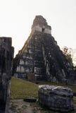 Ruines maya Tikal, Guatemala Photo stock