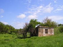 Ruines parmi les herbes photos libres de droits