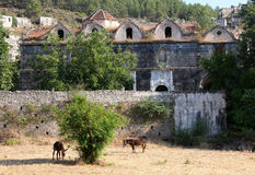 Ruinierte griechisch-orthodoxe Kirche in der Geisterstadt von Kayakoy Turke Lizenzfreie Stockfotos