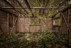 Ruinierte hölzerne Kabine, hölzernes costruction und grüne Natur stockfotos