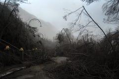 Ruinierte Straße mit den toten Bäumen bedeckt mit vulkanischer Asche nach Brom stockbild