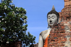 Ruinierter alter Tempel von Ayutthaya, Thailand Stockfotos