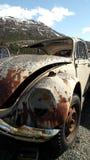 Ruinierter VW-Käfer Stockfotografie