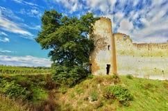 Ruiniertes französisches Schloss Stockfoto