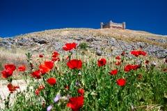 Ruiniertes Schloss übersieht Mohnblumefeld Stockfotografie