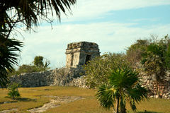 Ruins. Mayan Ruins located in rural Mexico royalty free stock photography