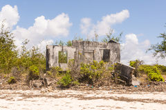 Ruins of an abandoned house covered in shrubs. Concrete grey bro Royalty Free Stock Image