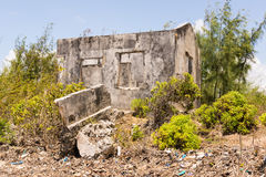 Ruins of an abandoned house covered in shrubs. Royalty Free Stock Photos