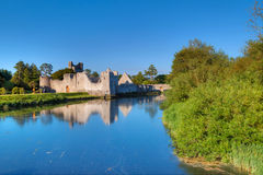 Ruins of Adare castle Stock Images