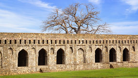 Ruins of Afghan architecture in Mandu, India Royalty Free Stock Photo