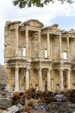 The ruins of the ancient antique city of Ephesus Royalty Free Stock Photo