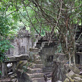 Ruins of ancient Beng Mealea Temple over jungle, Cambodia stock image