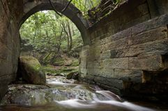 Ruins of an ancient bridge in the forest Stock Photography