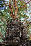 Ruins of ancient buddhist khmer temple. Giant stone faces of ancient buddhist khmer temple near Siem Reap, Cambodia Royalty Free Stock Photos