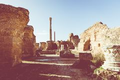 Ruins of the ancient Carthage city, Tunis, Tunisia, North Africa stock photo