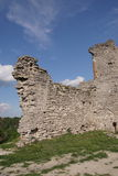 The ruins of the ancient castle in Ukraine. Stock Photos