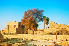 Ruins of ancient city Caesarea Stock Photo