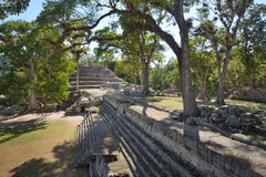 The ruins of the ancient city of Copan.  Stock Photography