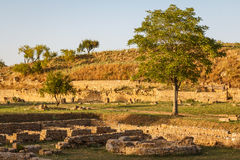 Ruins of the ancient city of Morgantina in the evening light Stock Photography