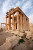 Ruins of ancient city of Palmyra - Syria royalty free stock image