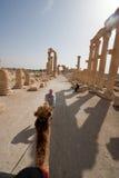 Ruins of ancient city of Palmyra - Syria Royalty Free Stock Photos