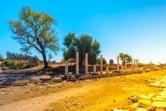 Ruins of ancient city Royalty Free Stock Photos