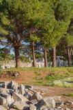 Ruins of ancient Ephesus Turkey Stock Photo