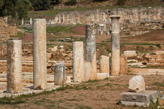 Ruins of the ancient Greek city of Messinia & x28;Messini, Messenia& x29;. Ruins of the ancient Greek city of Messinia & x28;Messini, Messenia& x29 Stock Photo