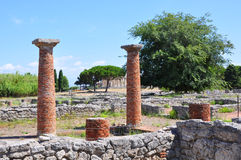 Ruins of ancient greek city Paestum, Italy. Royalty Free Stock Images