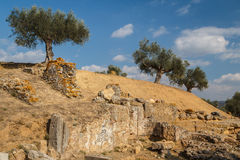 Ruins of the ancient Greek city of Sparta, Peloponnese. Greece Royalty Free Stock Image