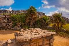 The ruins of the ancient Mayan city in the archaeological complex of Tulum. Riviera Maya, Yucatan, Mexico.  royalty free stock photo