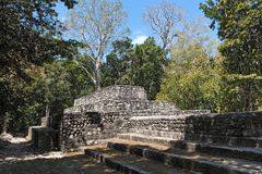 The ruins of the ancient mayan city of calakmul, campeche, mexico.  stock image