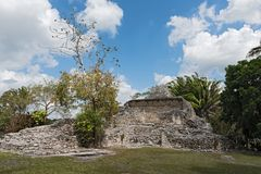 The ruins of the ancient Mayan city of Kohunlich, Quintana Roo, Mexico.  Royalty Free Stock Image