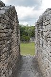 The ruins of the ancient Mayan city of Kohunlich, Quintana Roo, Mexico.  Stock Photo