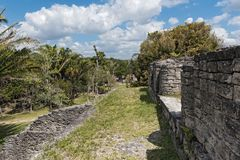 The ruins of the ancient Mayan city of Kohunlich, Quintana Roo, Mexico.  Royalty Free Stock Images