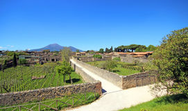 Ruins of Ancient Pompeii. In Italy Royalty Free Stock Photography